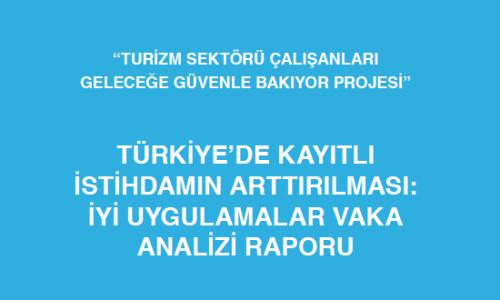 Türkiye'de Kayıtlı İstihdamın Arttırılması : İyi Uygulamalar Vaka Analizi Raporu