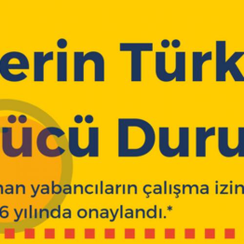 Suriyelilerin Türkiye'deki İş Gücü Durumu